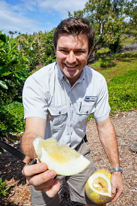 Sampling freshly-picked pomelo!